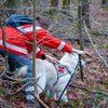 Eifrig und pflichtbewußt bei der Rettungshundearbeit im BRK