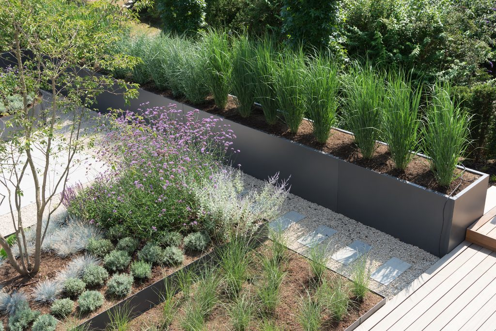 Kreuzer Pflanzen Gartengestaltung