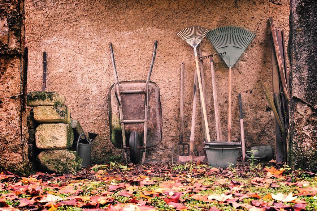 Kreuzer Pflanzen Werkzeuge