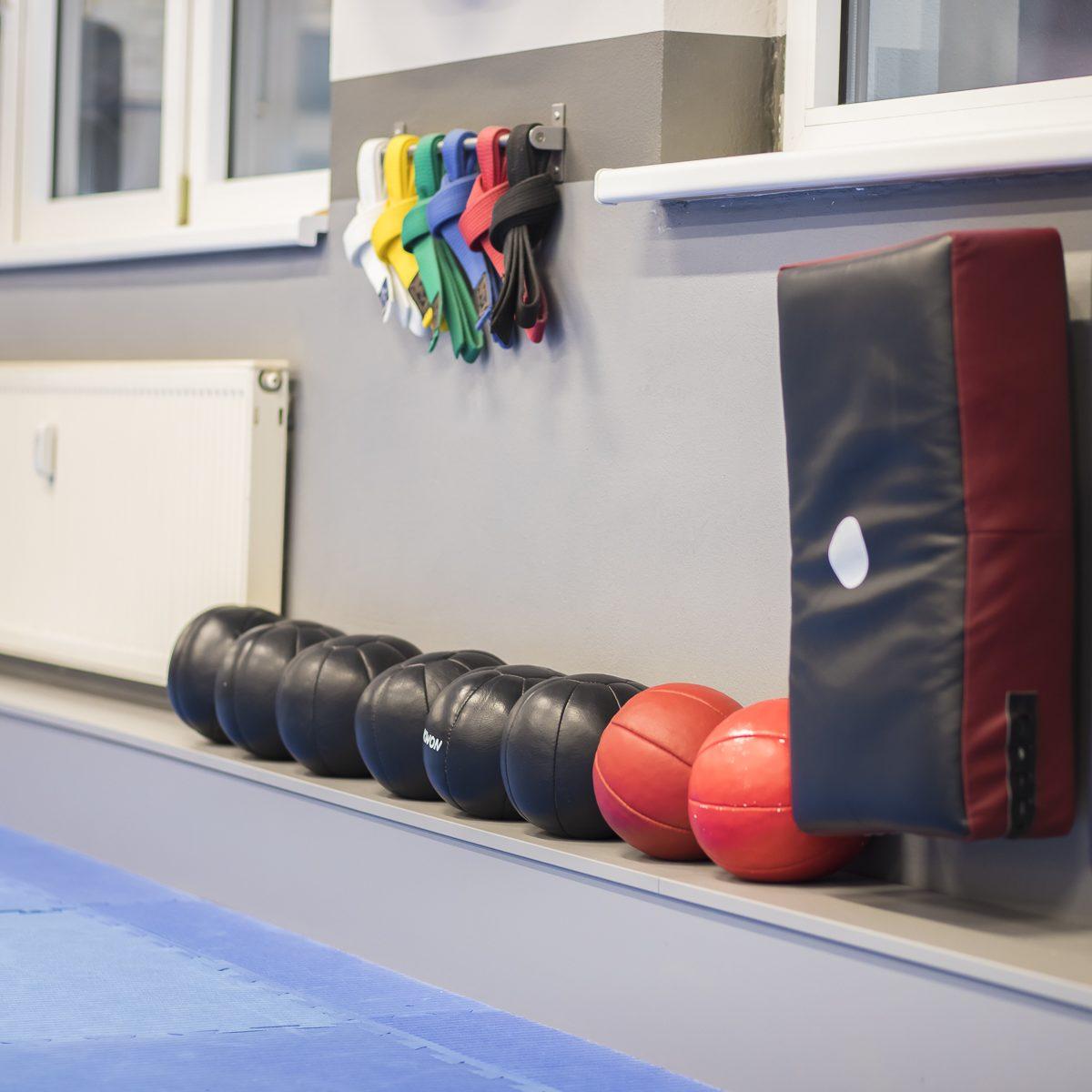 Medizinbälle für funktionelles Training in der Kampfsportschule Jena - BUDOSPORT.CLUB