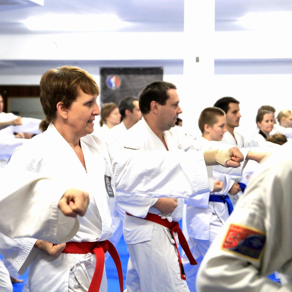 Effektives Kampfkunst- und Kampfsporttraining (Karate, Tae Kwon-Do und Kickboxen) in Weimar.