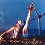 """Sam Raimis Klassiker """"Tanz der Teufel"""" ist bis heute mein absoluter Lieblingsfilm. Sehr viel Splatter, gepaart mit ein bisschen Selbstironie und Bruce Campbell- fantastisch!"""