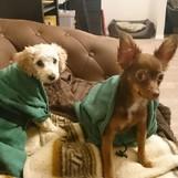 Sunny und Dusija nach dem Duschen in ihren Bademäntel