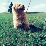 Ginny :)