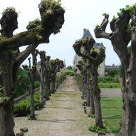 Klostergarten mit Allee