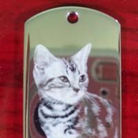 Fotogravur Katzenporträt Anhänger