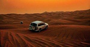 Morgendliche Safari durch die Wüste