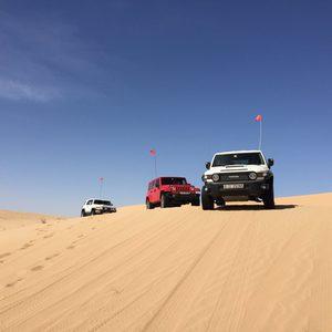 Safari durch die Wüste