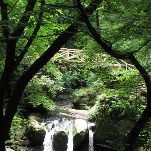 Mühlenwasserfall