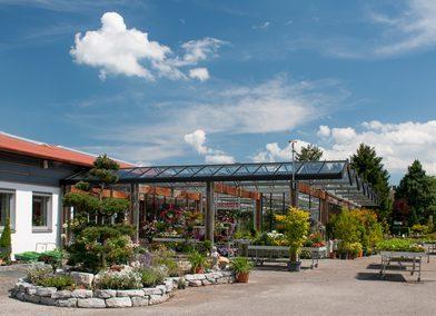 Kreuzer Pflanzen Gartenzentrum