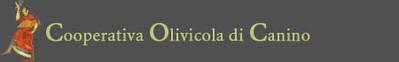 """Der Olivenanbau Canino ist eine Kooperative, die 1988 gegründet wurde und derzeit 130 Mitglieder hat, die alle in der Region von Canino (Viterbo) ihren Olivenanbau betreiben. Die Gegend ist eine der schönsten der Welt. Jedes Mitglied hält sich an Reg. CEE, also an die Regelungen, die öko-kompatiblen Anbauverfahren unterliegen und stark eingeschränkten Einsatz von Düngern und Baummedikamenten voraussetzen. Einige der Olivenanbaubetriebe setzen rein biologische Verfahren ein. An erster Stelle, und damit wichtiger als finanzielle Vorteile, verbindet die Olivenbauern die Leidenschaft für Oliven und Öl. Die Zielvorstellung ist, diese Leidenschaft mit dem anspruchsvollen Kunden zu teilen dabei die exzellente Qualität eines hochwertigen Produktes gemeinsam zu schätzen. Über lange Jahre hinweg ist es das Ziel der Kooperative, ein hochqualitatives Jungfernöl zu erzeugen und seine wertvollen Eigenschaften dann durch einen sorgfältig entwickelten und ausgeführten Produktionsgang zu maximieren. Zusätzlich zum herkömmlichen Öl """"Sapori di Terra Etrusca"""", bieten wir dem anspruchsvollen Kunden auch """"DOP Canino"""" und unsere biologisch angebauten Jungfernöle """"BIOLOGICO"""" und """"DOP Canino BIO"""" an. Letztere werden in limitierten Quantitäten produziert und ausschließlich aus den Oliven gewonnen, die aus Olivenhainen kommen, die jedes Kriterium der Zertifikation """"Biologisch"""" erfüllen.  In diesem Zusammenhang soll darauf hingewiesen werden, dass die Kooperative mit Respekt sowie für die Umwelt, als auch die reiche Geschichte und Kultur agiert, die ihr über Jahrtausende und Generationen hinweg überliefert wurde. Es ist unser Ziel, schrittweise ein Jungfernöl aufzuwerten, das – trotz seiner schon hohen Qualität – noch nicht den begehrten Platz Nr.1 erreicht hat, um den es auf dem Markt im Wettbewerb steht."""